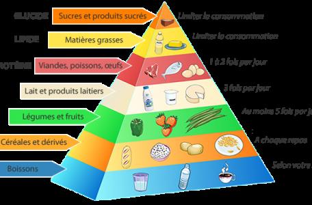 CFPPA Montbrison - nutrition 2