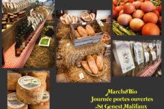 Le marché Bio à St Genest