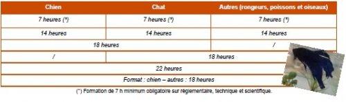 CFPPA Montbrison - CCAD Actualisation 2
