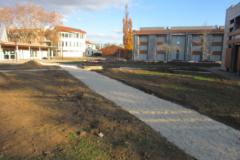 Les végétaux s'invitent au Campus